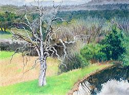 In Progress Bare Tree & Pond 04 Image