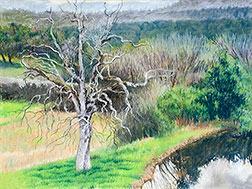 Bare Oak & Pond Final Image