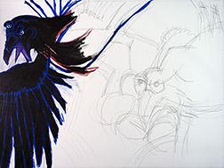 Ravens 01 Image