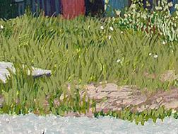 Grasses Image
